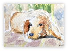 Dog painting/ORIGINAL Watercolour Miniature by StudioHydeArt #original #watercolour #painting #spaniel #dog View here: https://www.etsy.com/uk/listing/503631649/dog-paintingoriginal-watercolour?ref=shop_home_active_1