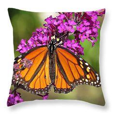 "Monarch Hangs on to Buddleia Throw Pillow 14"" x 14"""