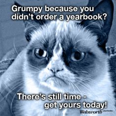 Motivate your year group to order their yearbook with a grumpy cat meme. Yearbook Memes, Yearbook Staff, Yearbook Covers, Yearbook Layouts, Yearbook Design, High School Yearbook, Yearbook Spreads, Elementary Yearbook Ideas, Teaching Yearbook