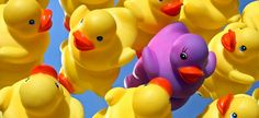 Parents who lost custody over bath-time photos, submitted to Wal-Mart for processing, are back in court. and Lisa Demaree have appealed a Phoenix, Arizona court's decision that Wal-Mart . Web Design, Social Environment, Target, Seo Strategy, Community Building, Time Photo, Rubber Duck, How To Become, Success