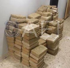 Elementos de la AEI aseguran media tonelada de marihuana en la carretera Ojinaga - Chihuahua | El Puntero