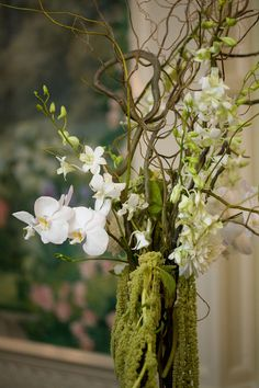 I love the hanging amaranthis with the orchids and curly willow. Such a natural, yet modern arrangement. could be kiwi vine? White Orchid Centerpiece, Orchid Centerpieces, Wedding Centerpieces, Wedding Decorations, Modern Floral Arrangements, Wedding Arrangements, Flower Arrangements, Floral Wedding, Wedding Flowers