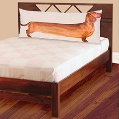 """Red Dachshund Full-Length Photo Real Body Pillow Case 54"""""""