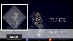 Skytech, Fafaq, R3hab - Tiger (Biggy See Bootleg)