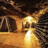 La larga vida de un vino