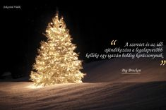 Winter Christmas, Xmas, Christmas Tree, Holidays And Events, Halloween, Holiday Decor, Inspiration, Advent, December