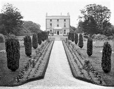 This photo was probably taken in the late of what was the Montgomery estate where Aunt Mary lived and where Allen Hamilton received an education for three years Donegal, Ireland Travel, Northern Ireland, Acre, Hamilton, Irish, Bucket, Outdoor, Education