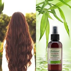 This Grow New Hair Treatment is loaded with nutrients and vitamins from plant extracts, oils and essentials that have been used since ancient times until today. Give your hair the renewed life, increased thickness and volume that leaves all hair types looking and feeling fuller, with incredible shine and silky feel.