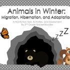 Animals are fascinating to read about, but buying class sets of books can be quite expensive!  This nonfiction text unit on animals in winter may h...
