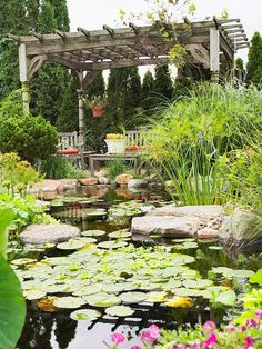 DIY garden look: Lilly pads make this pond look wildly romantic.