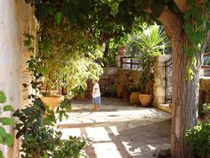 in Vamos, Crete - patio of house we'll be in in April
