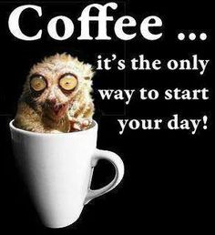 True! #Coffee... it's the only way to start your day! www.coffeeloversmag.com/theMagazine