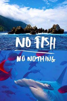 Kenzo Ocean Sustainability - No Fish, No nothing