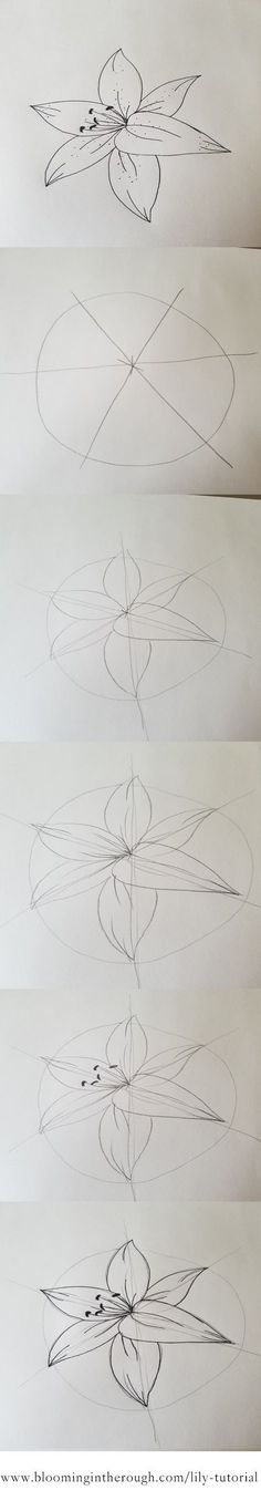 how to draw a pineapple step by step easy