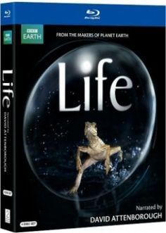 Another great nature documentary series is the BBC's LIFE documentary, which is narrated by David Attenborough.
