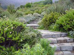 juan grimm paisagismo / jardín papudo, chile