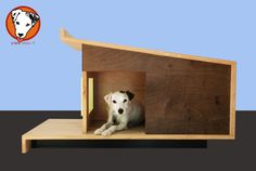 Modern dog house designed for the comfort of our by CleoLikesIt, $599.99