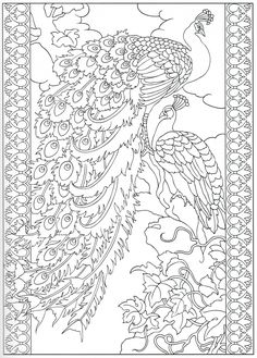 Peacock Coloring Pages Printable - Free Coloring Sheets Peacock Coloring Pages, Bird Coloring Pages, Adult Coloring Book Pages, Mandala Coloring, Printable Coloring Pages, Free Coloring, Coloring Sheets, Coloring Books, Peacock Drawing Images