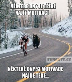 lol well thats motivation lol Hope you all had a wonderful Monday any of you have the day off funny funnymeme fitness fitnessmotivation fitnessmemes memes bear motivationmemes goodnight monday lol laugh haha sleepwell Memes Humor, Frases Humor, Funny Memes, Jokes, Funniest Memes, Funny Sayings, I Smile, Make Me Smile, Sports Challenge