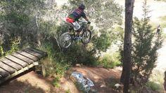 My Top Five: The Best Mountain Bike Trails in Florida | Singletracks Mountain Bike News
