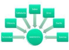 • La respiración abdominal, tiene por sí sola la capacidad de producir cambios en el cerebro. Favorece la secreción de hormonas como la serotonina y la endorfina y mejora la sintonía de ritmos cerebrales entre los dos hemisferios. • Algunos alimentos como los carbohidratos (pasta, arroz, mijo…) actúan sobre la producción de Serotonina, elevándola de…