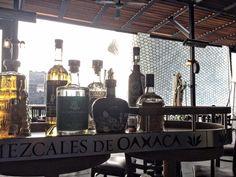 Mezcales de Oaxaca