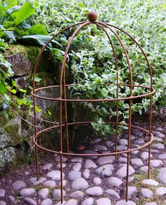 Lobster Pot support for peonies, poppies, and also good for over wintering a delicate plant (stuffed with straw) from Leander Plant Supports