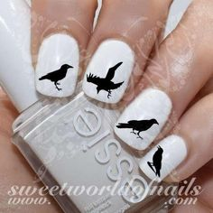 Raven Nail Art Nail Water Decals Transfers Wraps