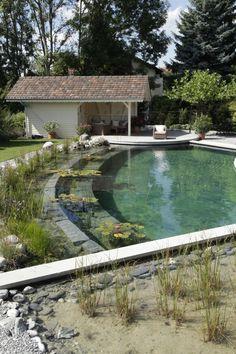Selbstbau Schwimmteich runde form vegetation niveaus