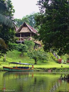 Our eco-resort, in the middle of the jungle - Eight Things to Do and Learn in the Amazon Rainforest (Ecuador)