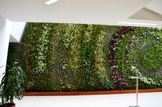 Fachadas vegetales plantas Ignacio Solano Hotel Cosmos 100