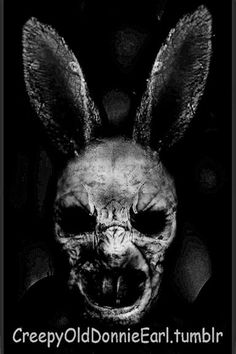 Bunny Rabbits, Creepy, Skull, Dark, Skulls