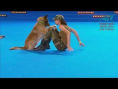 FCI Dog dance World Championship 2016 – Freestyle final - Lusy Imbergerova and Deril (Italy) Belgian Shepherd, German Shepherd Dogs, German Shepherds, Animals And Pets, Funny Animals, Cute Animals, Game Mode, Dog Competitions, Dog Thoughts