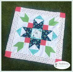 Seaside Barn Star, Quilt Kit, Seaside, Riley Blake, Tasha Noel – Huckleberry Quilting