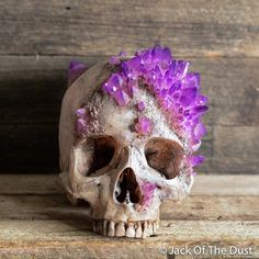 *FREE express shipping worldwide *Payment plans starting from 10%at the checkout   DETAILS Created by Andrew Firth - professionally known as Jack of the Dust Handcrafted in Australia. Initial skull was Molded off a real human skull specimen and is anatomically correct ( bar the crystals ) All of the joints, sutu