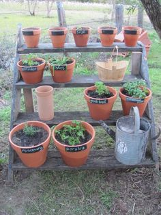 Great idea for herbs: chalkboard paint on pots for labeling herbs, using old/reclaimed wooden stairs, rustic