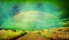Everlasting Life  A Rainbow Curved In The Sky  A Promise of God