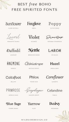 Graphic Design Fonts, Web Design, Logo Design, Cv Inspiration, Typography Inspiration, Boho Fonts, Bohemian Font, Bohemian Design, Typography Fonts
