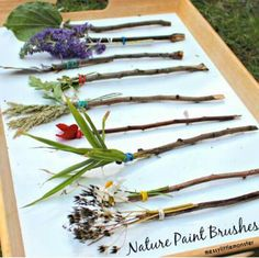 Nature Paintbrushes is a great way to teach children that nature has many tools!