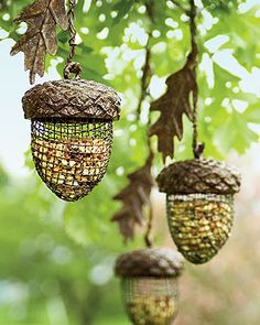 Acorn bird feeders...cute!