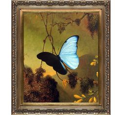 Martin Johnson Heade 'Blue Morpho Butterfly' Hand Painted Framed... ($164) ❤ liked on Polyvore featuring home, home decor, wall art, blue, blue bird painting, bird paintings, landscape painting, butterfly paintings and blue canvas wall art