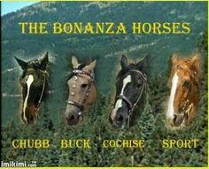 Bonanza Horses