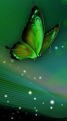 Search free green Ringtones and Wallpapers on Zedge and personalize your phone to suit you. Start your search now and free your phone Gothic Wallpaper, Green Wallpaper, Love Wallpaper, Colorful Wallpaper, Butterfly Wallpaper Iphone, Cellphone Wallpaper, Galaxy Wallpaper, Wallpaper Backgrounds, Wallpaper Nature Flowers