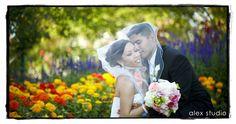 ALEX STUDIO PHOTOGRAPHY AND CINEMATOGRAPHY Maternity, Newborn, Head shot, Fashion portfolio Destination Wedding- Worldwide Travel Please contact us at 425.883.6800  Wedding, couple portraits with a sea of flowers around