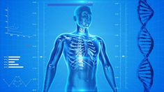 The demand for body organs to be used for transplantation is undoubtedly very high. In fact, US Department of Health ...