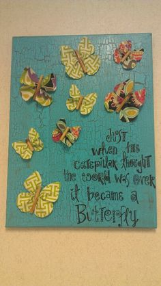 Just when the butterfly thought the world was over - it became a butterfly