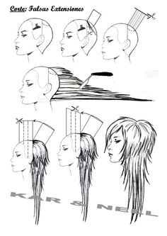 Resultado de imagen para diagram long layered haircut
