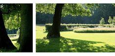 landschappelijke tuin Veluwe - Denkers in TuinenDenkers in Tuinen | Ontwerpers van stijlvolle en tijdloze tuinen