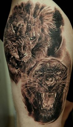 ☆ Lion & Panther :¦: By Artist Dmitriy Samohin ☆