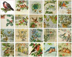 christmas bird vintage postcards - Pesquisa Google